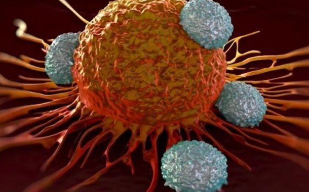 کشف دلیل اثر نکردن داروهای سرطان!