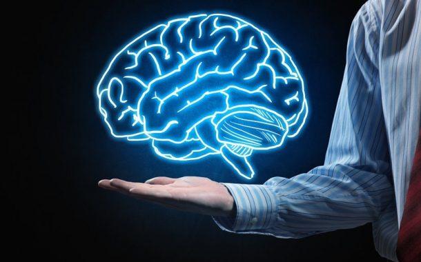 چه مواد غذایی برای مغز مفید است