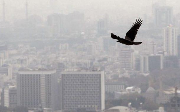 افزایش آلودگی هوا و احتمال تعطیلی مهدکودک ها و دبستان ها